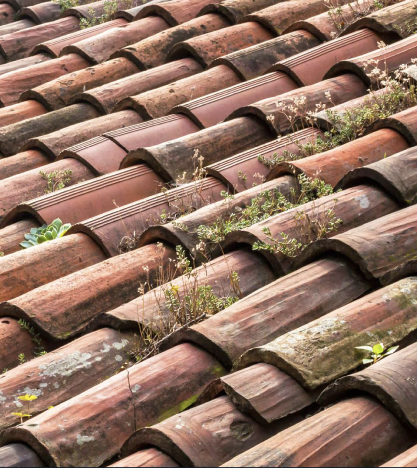 Typical Roof Weaknesses